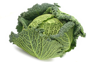 zahrada-zelenina-kapusta-1