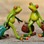 frogs-897387_960_720